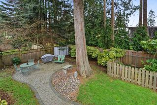 "Photo 19: 13654 MALABAR Avenue: White Rock House for sale in ""WestWhite Rock"" (South Surrey White Rock)  : MLS®# R2243171"
