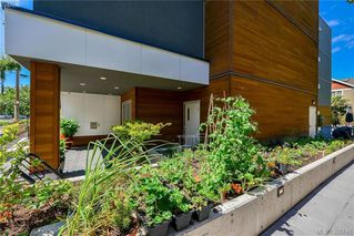 Photo 13: 304 300 Michigan St in VICTORIA: Vi James Bay Condo for sale (Victoria)  : MLS®# 789364
