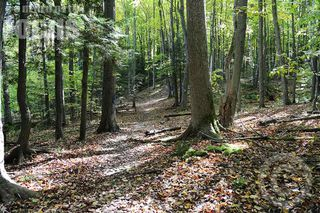Photo 1: LOTS HIGHWAY 3 in East Chester: 405-Lunenburg County Vacant Land for sale (South Shore)  : MLS®# 201823787