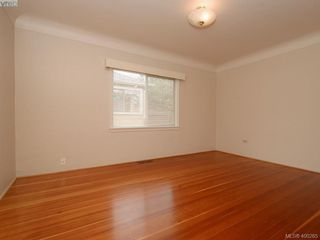Photo 10: 114 E Maddock Ave in VICTORIA: Vi Burnside House for sale (Victoria)  : MLS®# 798646