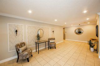 Photo 25: 105 14810 51 Avenue in Edmonton: Zone 14 Condo for sale : MLS®# E4149040