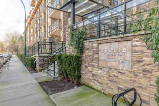"Photo 14: 306 2495 WILSON Avenue in Port Coquitlam: Central Pt Coquitlam Condo for sale in ""ORCHID"" : MLS®# R2353025"