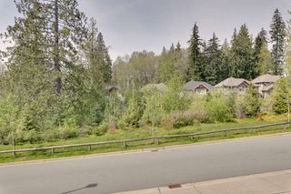 "Photo 49: 13536 229 Loop in Maple Ridge: Silver Valley House for sale in ""HAMPSTEAD"" : MLS®# R2364023"