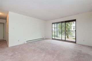 """Photo 11: 106 32910 AMICUS Place in Abbotsford: Central Abbotsford Condo for sale in """"Royal Oaks"""" : MLS®# R2381104"""
