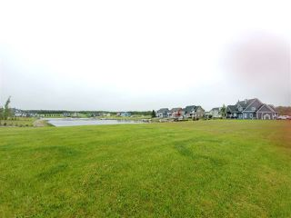 Photo 5: #12 Sunset Harbour: Rural Wetaskiwin County Rural Land/Vacant Lot for sale : MLS®# E4162537