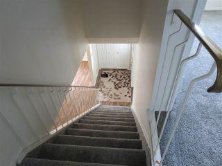 Photo 12: 4112 116 Street NW in Edmonton: Zone 16 House for sale : MLS®# E4172702