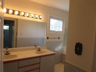 Photo 14: 4112 116 Street NW in Edmonton: Zone 16 House for sale : MLS®# E4172702