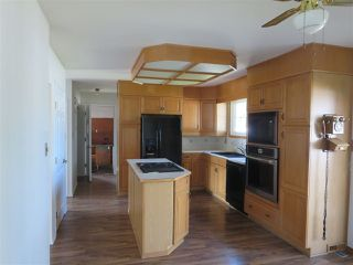Photo 6: 4112 116 Street NW in Edmonton: Zone 16 House for sale : MLS®# E4172702