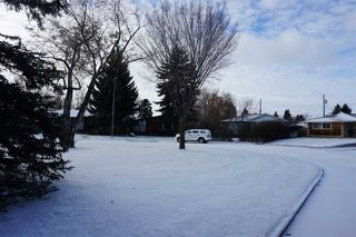 Photo 4: 10320 42 Street in Edmonton: Zone 19 Vacant Lot for sale : MLS®# E4179118