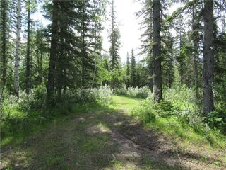Photo 4: 70041 Highway 591: Rural Clearwater County Detached for sale : MLS®# C4305359