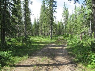 Photo 7: 70041 Highway 591: Rural Clearwater County Detached for sale : MLS®# C4305359