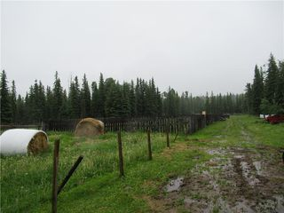 Photo 19: 70041 HWY 591 Clearwater County: Rural Clearwater County House for sale : MLS®# C4305359