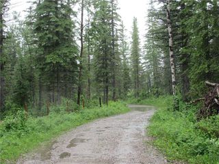 Photo 18: 70041 Highway 591: Rural Clearwater County Detached for sale : MLS®# C4305359