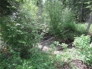 Photo 8: 70041 Highway 591: Rural Clearwater County Detached for sale : MLS®# C4305359