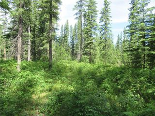 Photo 9: 70041 Highway 591: Rural Clearwater County Detached for sale : MLS®# C4305359