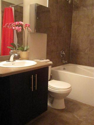 Photo 7:  in Edmonton: Zone 08 Condo for sale : MLS®# E4209308