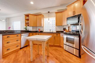 Photo 5: 519 53 Avenue SW in Calgary: Windsor Park Detached for sale : MLS®# A1036002