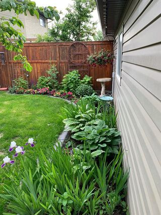 Photo 47: 519 53 Avenue SW in Calgary: Windsor Park Detached for sale : MLS®# A1036002