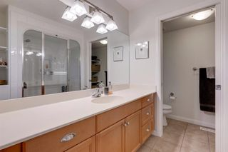 Photo 25: 519 53 Avenue SW in Calgary: Windsor Park Detached for sale : MLS®# A1036002