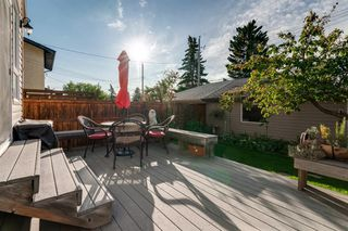 Photo 46: 519 53 Avenue SW in Calgary: Windsor Park Detached for sale : MLS®# A1036002