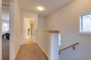 Photo 34: 519 53 Avenue SW in Calgary: Windsor Park Detached for sale : MLS®# A1036002