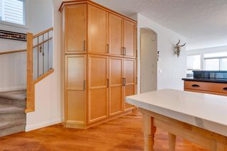 Photo 8: 519 53 Avenue SW in Calgary: Windsor Park Detached for sale : MLS®# A1036002