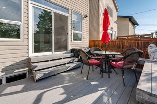 Photo 45: 519 53 Avenue SW in Calgary: Windsor Park Detached for sale : MLS®# A1036002