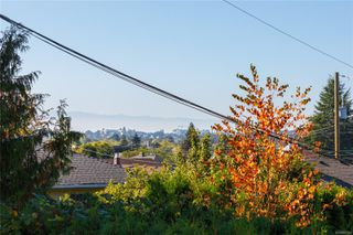 Photo 18: 1797 Mcrae Ave in : SE Camosun House for sale (Saanich East)  : MLS®# 857060