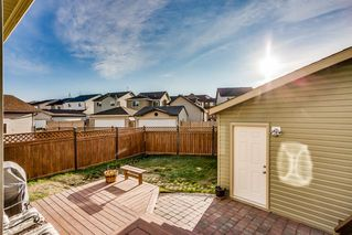 Photo 20: 115 SKYVIEW SPRINGS Gardens NE in Calgary: Skyview Ranch Detached for sale : MLS®# A1035316