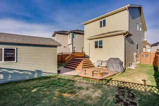Photo 19: 115 SKYVIEW SPRINGS Gardens NE in Calgary: Skyview Ranch Detached for sale : MLS®# A1035316