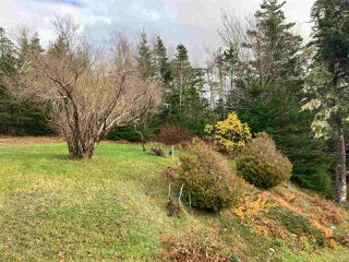 Photo 7: 801 Ostrea Lake Road in Ostrea Lake: 35-Halifax County East Residential for sale (Halifax-Dartmouth)  : MLS®# 202023859