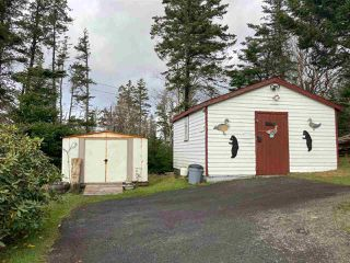 Photo 6: 801 Ostrea Lake Road in Ostrea Lake: 35-Halifax County East Residential for sale (Halifax-Dartmouth)  : MLS®# 202023859