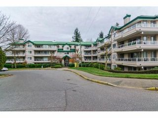 "Photo 18: 329 2750 FAIRLANE Street in Abbotsford: Central Abbotsford Condo for sale in ""THE FAIRLANE"" : MLS®# F1428068"