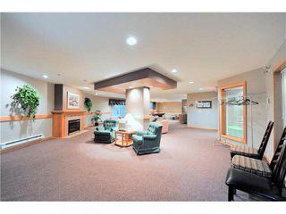 "Photo 19: 303 1132 DUFFERIN Street in Coquitlam: Eagle Ridge CQ Condo for sale in ""CREEKSIDE"" : MLS®# V1098509"
