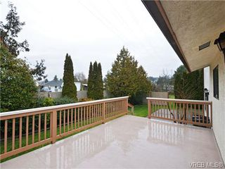 Photo 18: 826 Cameo Street in VICTORIA: SE High Quadra Single Family Detached for sale (Saanich East)  : MLS®# 360683