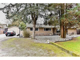 Photo 1: 8444 152 Street in Surrey: Fleetwood Tynehead House for sale : MLS®# R2041312