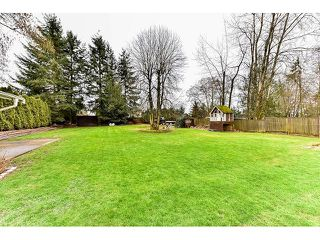 Photo 19: 8444 152 Street in Surrey: Fleetwood Tynehead House for sale : MLS®# R2041312