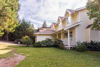 Photo 19: 5636 MARINE Drive in West Vancouver: Eagle Harbour House for sale : MLS®# R2125482