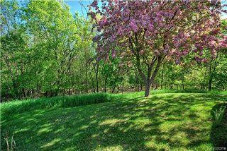 Photo 17: 601 St Anne's Road in Winnipeg: Meadowood Condominium for sale (2E)  : MLS®# 1713660