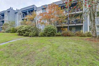 Photo 15: 112 1122 KING ALBERT AVENUE in Coquitlam: Central Coquitlam Condo for sale : MLS®# R2215013