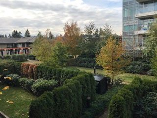 "Photo 10: 311 1128 KENSAL Place in Coquitlam: New Horizons Condo for sale in ""CELADON HOUSE"" : MLS®# R2220939"