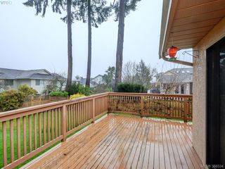 Photo 19: 2434 Twin View Dr in VICTORIA: CS Tanner Single Family Detached for sale (Central Saanich)  : MLS®# 776876