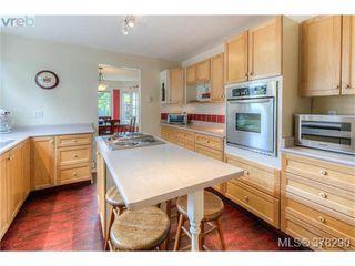 Photo 17: 22 Cambridge Street in VICTORIA: Vi Fairfield West Residential for sale (Victoria)  : MLS®# 378290