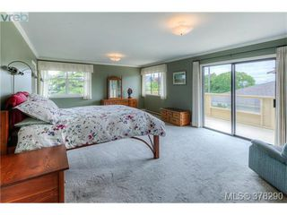 Photo 8: 22 Cambridge Street in VICTORIA: Vi Fairfield West Residential for sale (Victoria)  : MLS®# 378290
