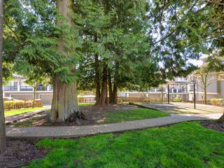 """Photo 20: 102 20449 66 Avenue in Langley: Willoughby Heights Townhouse for sale in """"Natures Landing"""" : MLS®# R2260728"""