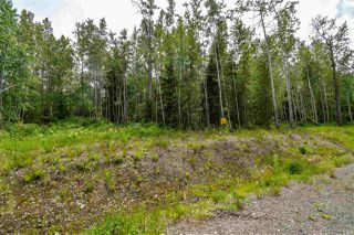 "Photo 7: 9 3000 DAHLIE Road in Smithers: Smithers - Rural Home for sale in ""Mountain Gateway Estates"" (Smithers And Area (Zone 54))  : MLS®# R2280461"
