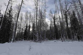 "Photo 31: 9 3000 DAHLIE Road in Smithers: Smithers - Rural Land for sale in ""Mountain Gateway Estates"" (Smithers And Area (Zone 54))  : MLS®# R2280461"