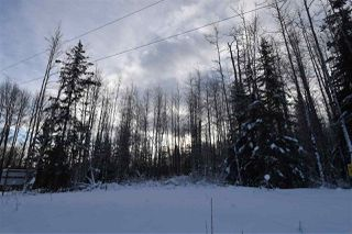"Photo 27: 9 3000 DAHLIE Road in Smithers: Smithers - Rural Land for sale in ""Mountain Gateway Estates"" (Smithers And Area (Zone 54))  : MLS®# R2280461"