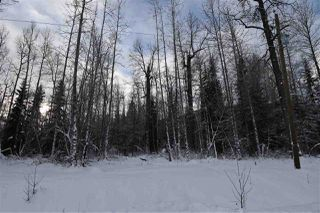 "Photo 33: 9 3000 DAHLIE Road in Smithers: Smithers - Rural Land for sale in ""Mountain Gateway Estates"" (Smithers And Area (Zone 54))  : MLS®# R2280461"
