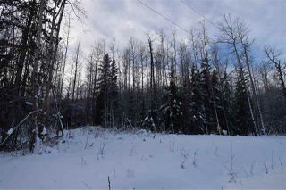 "Photo 24: 9 3000 DAHLIE Road in Smithers: Smithers - Rural Land for sale in ""Mountain Gateway Estates"" (Smithers And Area (Zone 54))  : MLS®# R2280461"